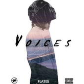 Voices by Player