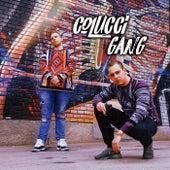 Colucci Gang de Phöönix