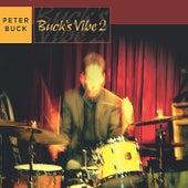 Buck's Vibe 2 by Peter Buck