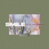 Smile (feat. Sara Bareilles) by Todd Carey