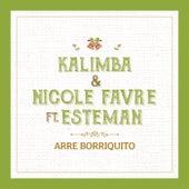 Arre Borriquito by Kalimba