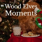 Wood Elves Moments by Jimmy Durante, Little Lambsie Penn, Leory Anderson, The Davis Sisters, Freddy Cannon, The Ames Brothers, Mario Lanza, Barry