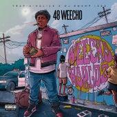 Weecho World 2 von 48 Weecho