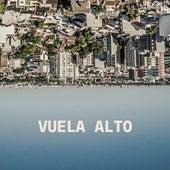 Vuela Alto by Nonpalidece