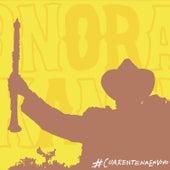 #CuarentenaEnVivo (en vivo desde la cuarentena) by La Internacional Sonora Balkanera