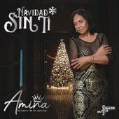 Navidad Sin Ti de Amina La Reina de la Cumbia