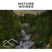Nature Noises de Relaxing Radiance