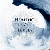 Healing at All Levels: Physical, Emotional & Spiritual Healing de Mindfullness Meditation World