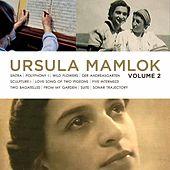 Music of Ursula Mamlok, Vol. 2 by Various Artists
