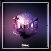 Boom, Vol. 9 de Various Artists
