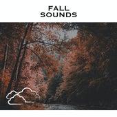 Fall Sounds de Relaxing Radiance
