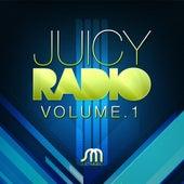 Juicy Radio Volume 1 von Various Artists