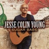 Sugar Babe (Highway Troubadour Version) de Jesse Colin Young