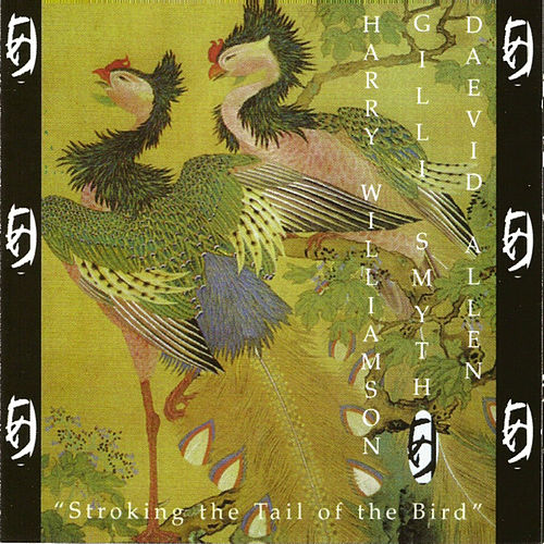 Stroking the Tail of the Bird by Daevid Allen
