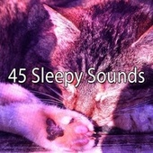 45 Sleepy Sounds by Ocean Sounds Collection (1)