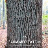 Baum Meditation: Ich Umarme dich in Andacht und Stille von Franziska Diesmann