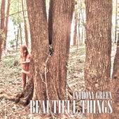 Beautiful Things de Anthony Green