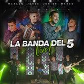 La Banda del 5 Live de La Banda Del 5