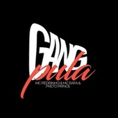 gang pula by Mc Pedrinho
