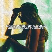 Explosion of Sound: Big Room Party Beats de Various Artists