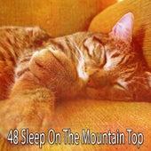 48 Sleep on the Mountain Top de Sleepy Night Music