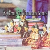 58 Calming Aura Ambience Sounds von Massage Therapy Music