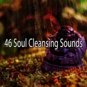 46 Soul Cleansing Sounds de Massage Tribe