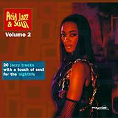 Acid Jazz & Soul: 20 Jazzy Tracks With a Touch of Soul for the Nightlife, Vol. 2 von Various Artists