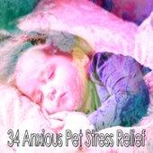 34 Anxious Pet Stress Relief de Thunderstorm Sleep