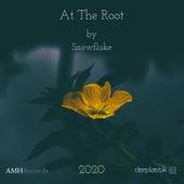 At The Root (2020 remix) de Deeplastik
