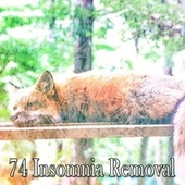 74 Insomnia Removal by Best Relaxing SPA Music