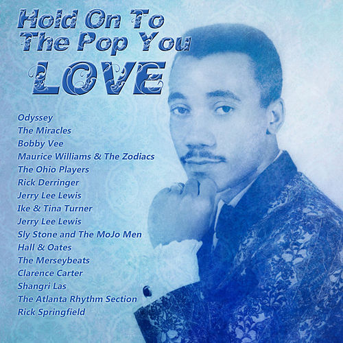 Hold On To The Pop You Love von Various Artists