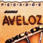 Pecados von Banda Aveloz