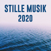 Stille Musik 2020 by Various Artists