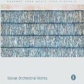 Slovak Orchestral Works de Slovak Radio Symphony Orchestra