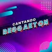 Cantando Reggaeton de Various Artists