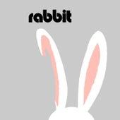 Rabbit (feat. Dave Evans, Mark Tinson, Jim Porteus & Phil Screen) by Rabbit
