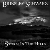 Storm in the Hills by Brinsley Schwarz