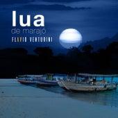 Lua de Marajó de Flavio Venturini