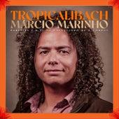 Tropicalibach von Márcio Marinho
