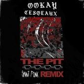 The Pit (Saint Punk Remix) by Ookay, Cesqeaux, Saint Punk
