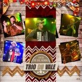 DVD Pé De Serra Trio Du Vale de Trio Du Vale