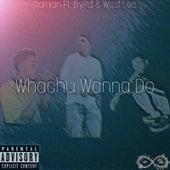 Whachu Wanna Do de Damian