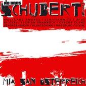 Mia san Österreich (Austro Pop Version) de No Bros