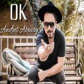 Ok (Versión Salsa) de Andres Atxury