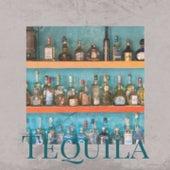 Tequila by Lola Beltran, Manuel Vallejo, Xavier Cugat, Manolo Caracol, Antonio Machin, Lena Horne, Boxcar Willie, Marty Robbins