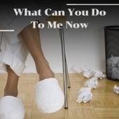 What Can You Do to Me Now by Luis Mariano, Willie Nelson, Fausto Papetti, Francia, Nico Membiela, Los Alegres de Teran, Nico Saquito, Alfredo De Angelis, Stanley Black