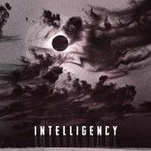 Muzika 2020 by Intelligency