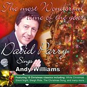 The Most Wonderful Time of the Year by David Parry
