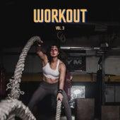Workout, vol. 3 von Various Artists